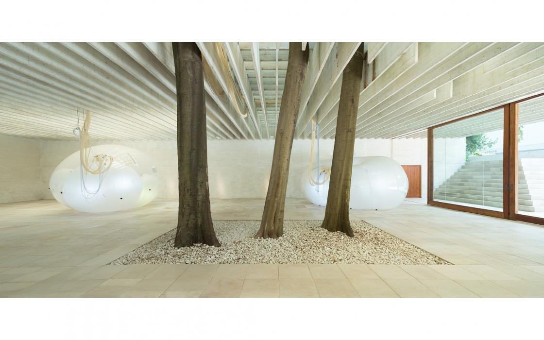 Nordischer Pavillon, Architekturbiennale Venedig 2018